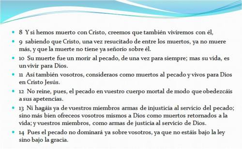 0 Romanos 6,8-14