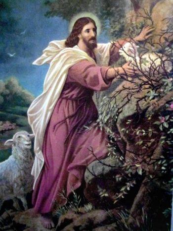 jesus_buen-pastor1-1